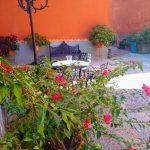 Color y familia - Claudia Robles Reveles - 47 años - Villanueva, Zacatecas